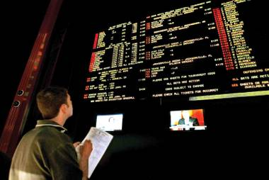 A gambler glances at the betting board in this file photo.