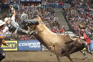 It might look like a loss, but this was a huge win for Robson Palermo on RMEF Gunpowder & Lead. The 8-second ride earned 93.5 out of 100 at a PBR event in Milwaukee, Wisconsin.