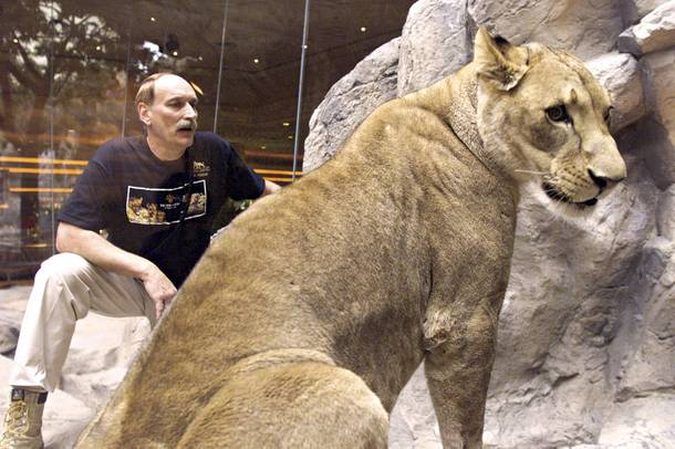 Lion owner Keith Evans poses with one of his cats at the MGM Grand lion habitat in 1999.