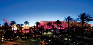 Peter Morton opened the Hard Rock Hotel and Casino in Las Vegas in 1995, the same year Michael Morton opened the Drink nightclub a few blocks away.